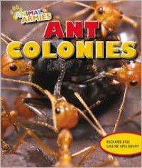 Ant Colonies - Richard Spilsbury,  Louise Spilsbury