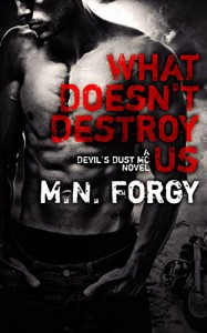 What Doesn't Destroy Us (The Devil's Dust Book 1) - M. N. Forgy