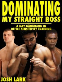 Dominating my Straight Boss (A Gay Gangbang in Office Sensitivity Training) - Josh Lark