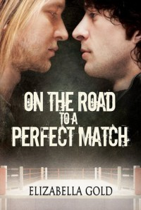 On the Road to a Perfect Match - Elizabella Gold