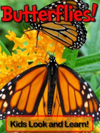 Butterflies! Learn About Butterflies and Enjoy Colorful Pictures - Look and Learn! (50+ Photos of Butterflies) - Becky Wolff