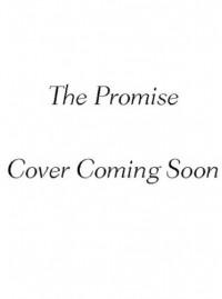 The Promise (The 'Burg Series) - Kristen Ashley