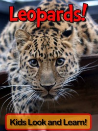 Leopards! Learn About Leopards and Enjoy Colorful Pictures - Look and Learn! (50+ Photos of Leopards) - Becky Wolff