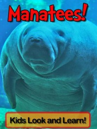 Manatees! Learn About Manatees and Enjoy Colorful Pictures - Look and Learn! (50+ Photos of Manatees) - Becky Wolff