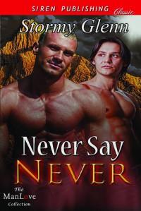 Never Say Never - Stormy Glenn