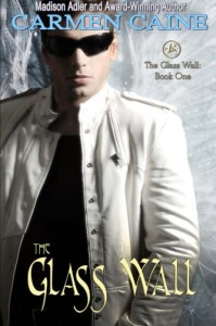 The Glass Wall: Book One - Madison Adler