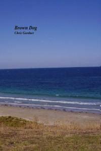 Brown Dog - Christine Gardner