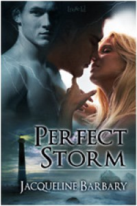 Perfect Storm - Jacqueline Barbary