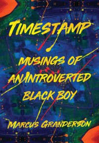 Timestamp: Musings of an Introverted Black Boy - Marcus Granderson