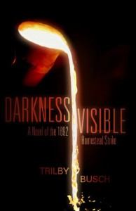 Darkness Visible: A Novel of the 1892 Homestead Strike - Trilby Busch