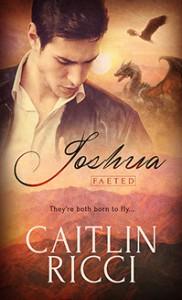 Joshua (Faeted Book 1) - Caitlin Ricci