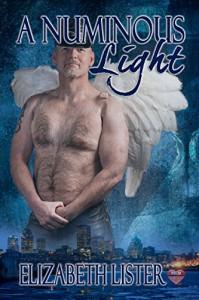 A Numinous Light (The James Lucas Series Book 3) - Elizabeth Lister
