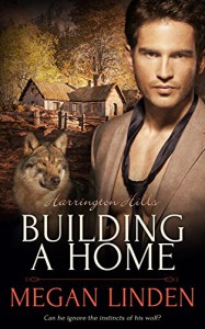 Building a Home (Harrington Hills Book 2) - Megan Linden