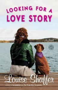 Looking for a Love Story - Louise Shaffer