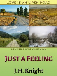 Just a Feeling - J.H. Knight