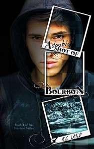 A Double Shot of Bourbon (The Bourbon Series Book 2) - AC Land