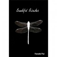 Beautiful Disaster (The Bet, #1) - Francette Phal