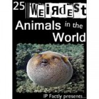 The 25 Weirdest Animals in the World! Amazing facts, photos and video links to the strangest creatures on the planet. (Amazing Animals Series) - IP Factly