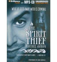 The Spirit Thief  - Rachel Aaron, Luke Daniels