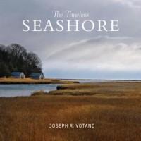 The Timeless Seashore - Joe Votano