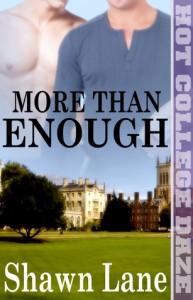 More Than Enough - Shawn Lane