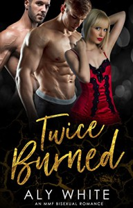 Twice Burned - Karen White