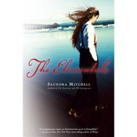 The Elementals (The Vespertine, #3) - Saundra Mitchell