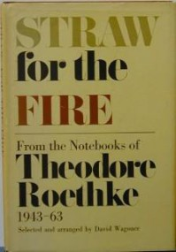 Straw for the Fire - Theodore Roethke, David Wagoner