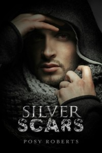 Silver Scars - Posy Roberts