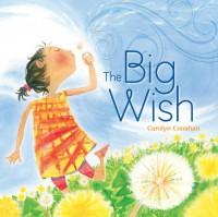 The Big Wish - Carolyn Conahan