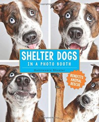 Shelter Dogs in a Photo Booth - Guinnevere Shuster