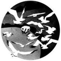Plague of Gulls - Stephen Gregory