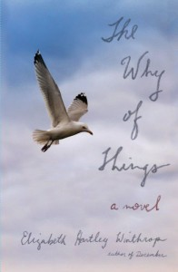 The Why of Things: A Novel - Elizabeth Hartley Winthrop