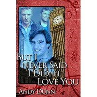 But I Never Said I Didn't Love You - Andy Dunn