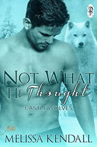 Not What He Thought (1Night Stand) - Melissa Kendall