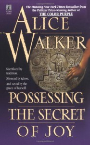 Possessing the Secret of Joy (Mass Market) - Alice Walker