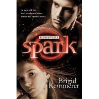 Spark (Elementals, #2) - Brigid Kemmerer