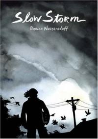 Slow Storm - Danica Novgorodoff