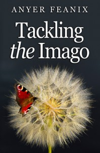 Tackling The Imago - Anyer Feanix