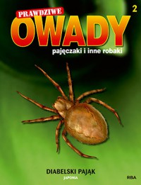 Diabelski pająk - praca zbiorowa