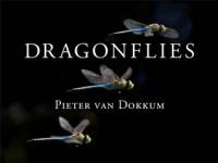 Dragonflies: Magnificent Creatures of Water, Air, and Land - Pieter van Dokkum