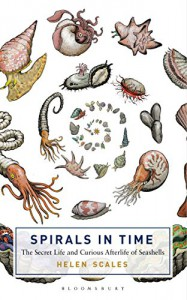 Spirals in Time: The Secret Life and Curious Afterlife of Seashells (Bloomsbury Sigma) - Helen Scales