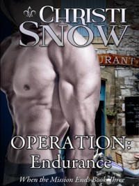 Operation: Endurance (When the Mission Ends, #3) - Christi Snow