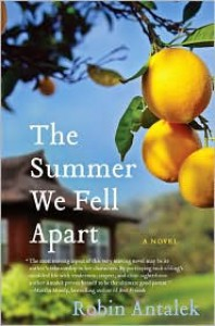 The Summer We Fell Apart - Robin Antalek