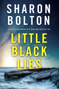 Little Black Lies - S.J. Bolton