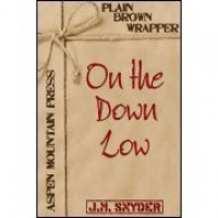 On the Down Low - J.M. Snyder