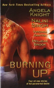 Burning Up (Berkley Sensation) -  'Meljean Brook',  'Virginia Kantra', 'Angela Knight', Nalini Singh
