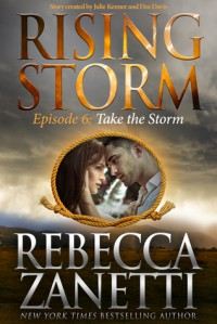 Take The Storm - Rebecca Zanetti
