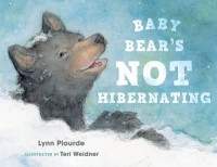 Baby Bear's Not Hibernating - Lynn Plourde, Teri Weidner