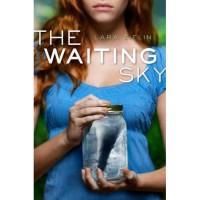 The Waiting Sky - Lara Zielin
